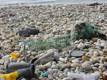 E-Redes Project reduces marine litter on land and at sea